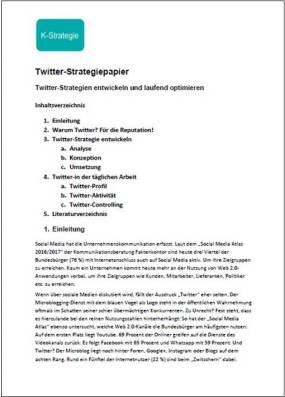 KST_Twitter-Strategiepapier-Grafik